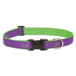 "LUPINE nyakörv (CLUB Hampton Purple 1"" 31-50 cm)"