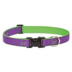 "LUPINE nyakörv (CLUB Hampton Purple 1"" 41-71 cm)"