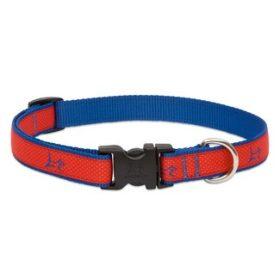 Lupine Club nyakörvek közepes termetű kutyáknak - 1,9 cm széles