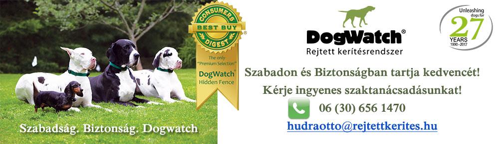 Dogwatch rejtett kerítés rendszerek