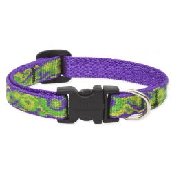 Lupine Original Collection Big Easy Adjustable Collar 1,25 cm width 21-30 cm -  For Small Dogs
