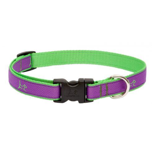 LUPINE nyakörv (CLUB Hampton Purple 1,9 cm széles 34-55 cm)