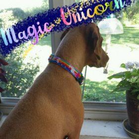 Magic Unicorn (2,5 cm széles)