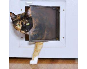 Macska ajtók