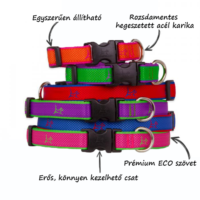 Lupine Club collars features