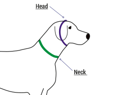 Martingale Dog Collar Fitting and Sizing Help